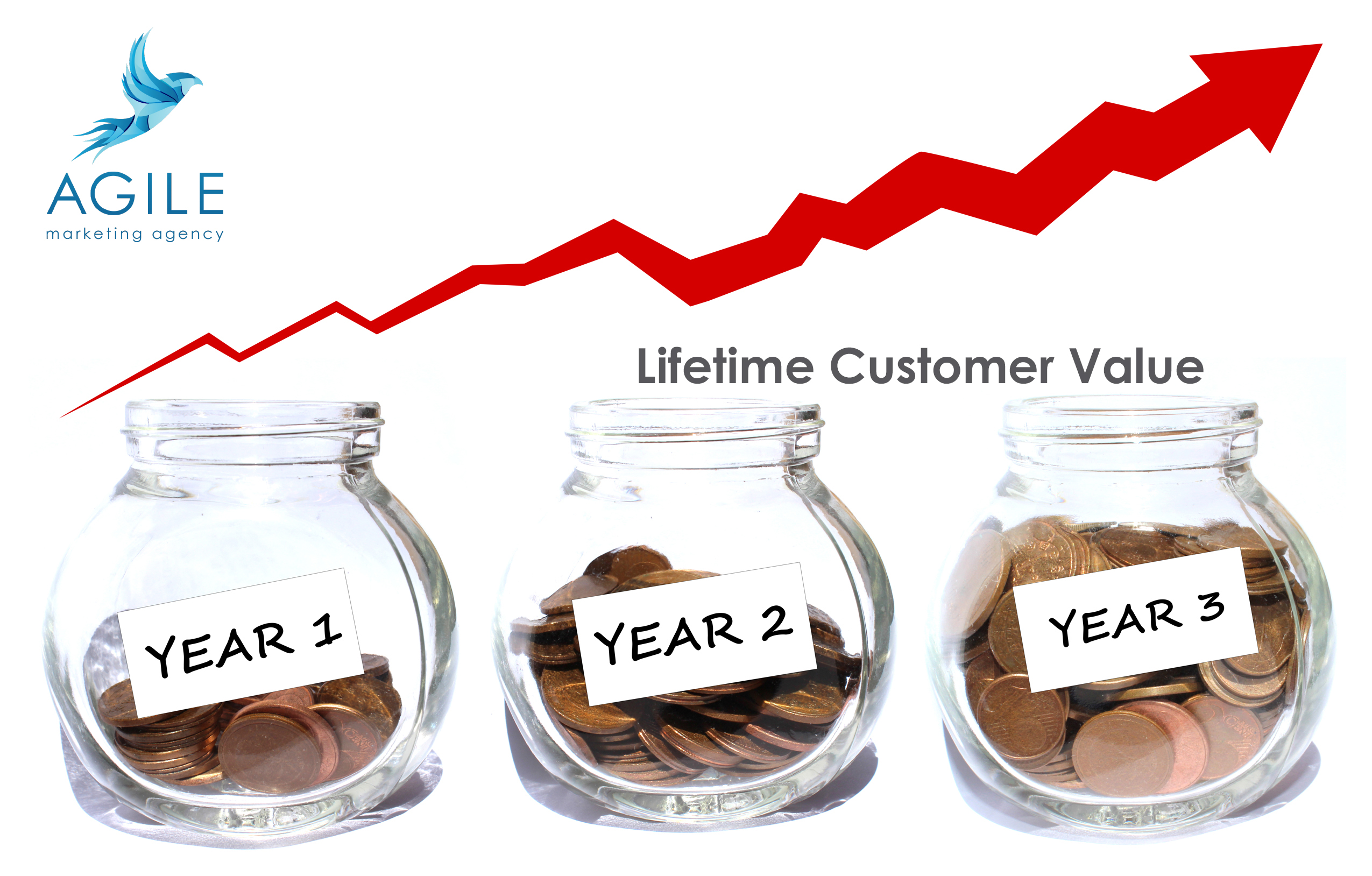 customer lifetime value geld grafiek